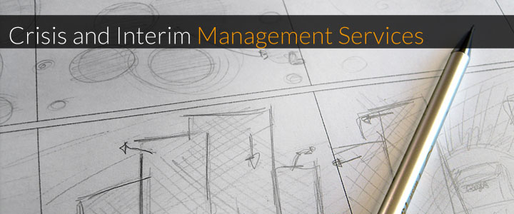 Crisis and Iterim Management Services